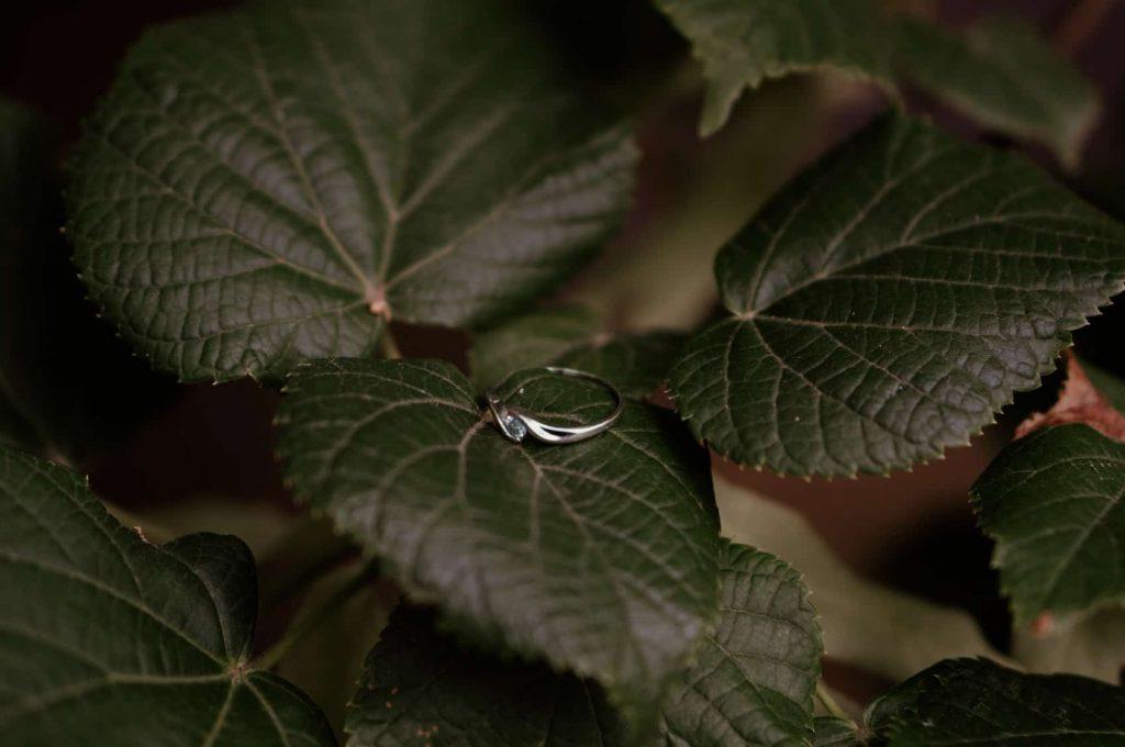 sesja-narzeczenska-ogrod-botaniczny-lodz (27)
